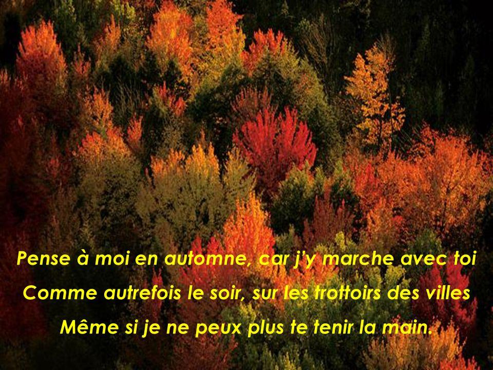 Et la terre se met à mourir. Les feuilles sur les arbres deviennent brun doré. LAUTOMNE.