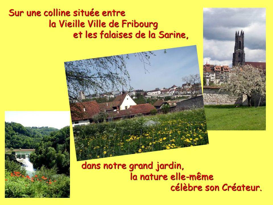 Sur une colline située entre la Vieille Ville de Fribourg la Vieille Ville de Fribourg et les falaises de la Sarine, et les falaises de la Sarine, dans notre grand jardin, la nature elle-même la nature elle-même célèbre son Créateur.
