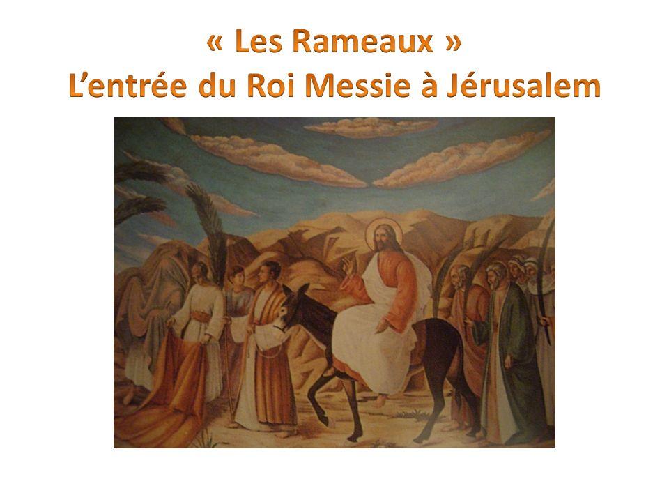 « Ils amenèrent alors la bête à Jésus, puis jetant sur elle leurs vêtements, ils firent monter Jésus ; et à mesure quil avançait, ils étendaient leurs vêtements sur la route.