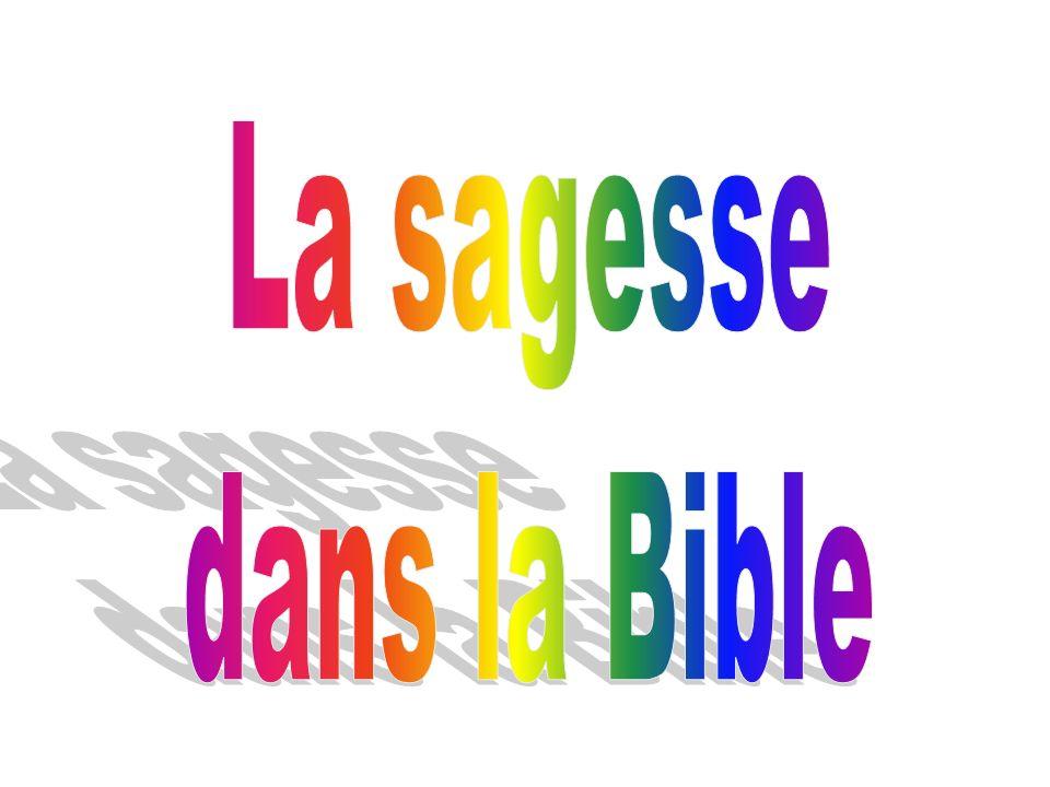 Un exemple… « Celui d entre vous qui est sans péché, qu il soit le premier à lui jeter la pierre.