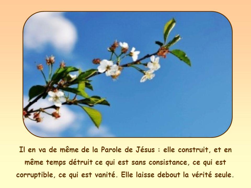 Il en va de même de la Parole de Jésus : elle construit, et en même temps détruit ce qui est sans consistance, ce qui est corruptible, ce qui est vanité.