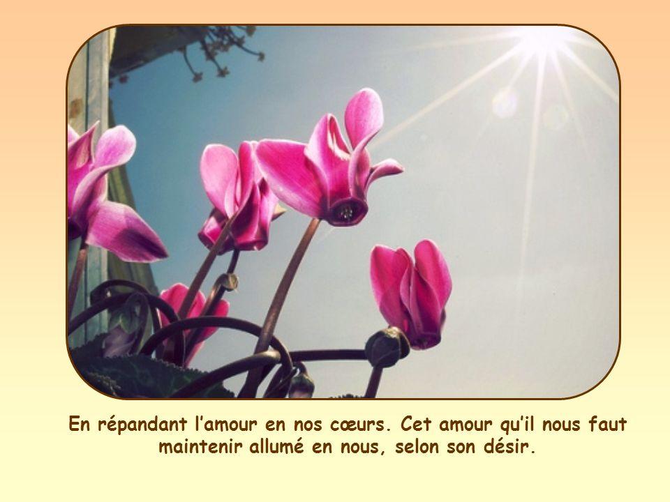 Parole de Vie, Vie, publication mensuelle du Mouvement des Focolari.