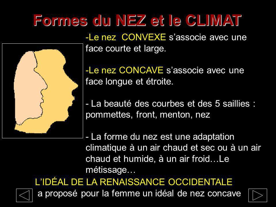Formes du NEZ et le CLIMAT -Le nez CONVEXE sassocie avec une face courte et large.