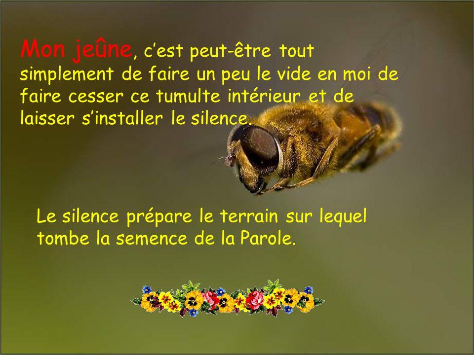 .. TROIS PISTES POUR MON CARÊME, CETTE ANNÉE: Le jeûne La prière Laumône