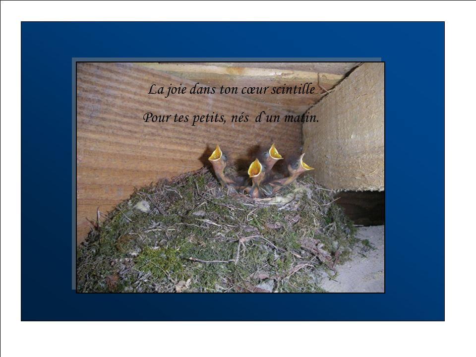 Ton nid tissé de brindilles Comme la fileuse tisse son lin,.