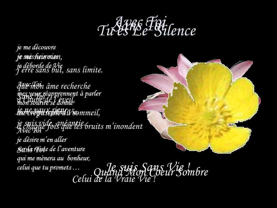 Quand le silence mattire cest Toi qui me fais signe Quand le silence minterpelle cest Toi qui mappelles Quand le silence me parle cest Toi qui me dis