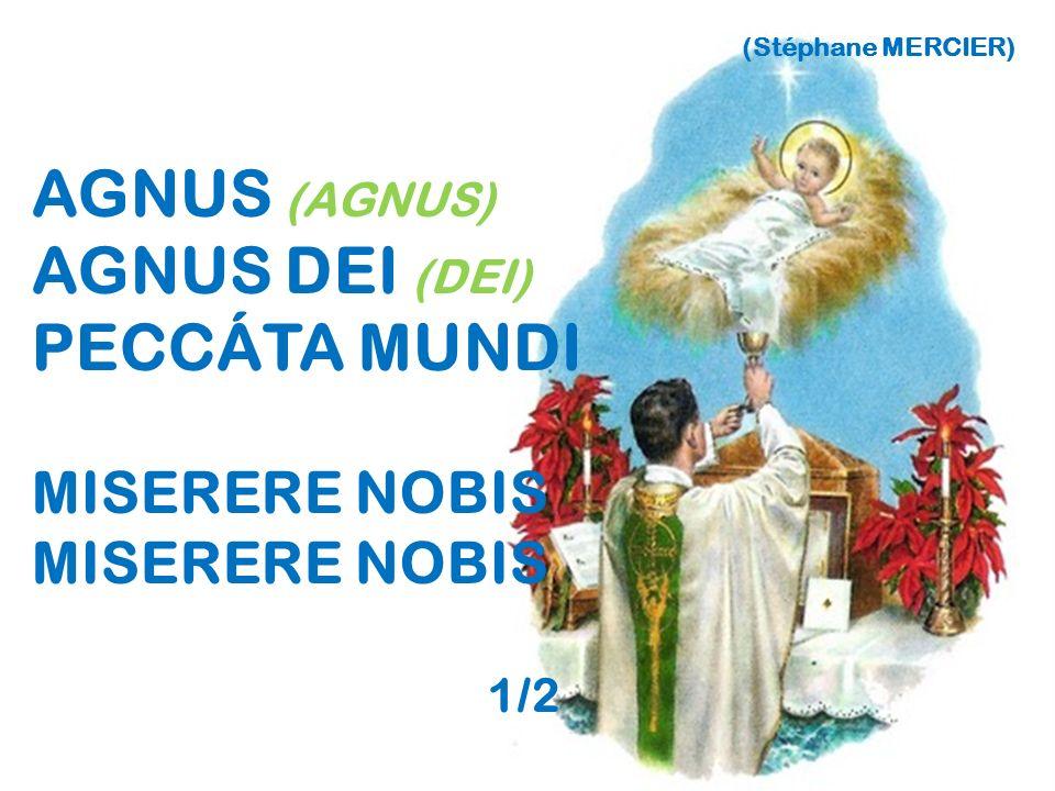 (Stéphane MERCIER) AGNUS (AGNUS) AGNUS DEI (DEI) PECCÁTA MUNDI MISERERE NOBIS 1/2