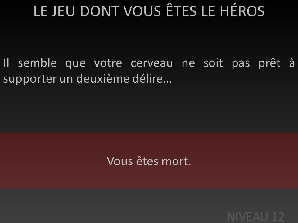 LE JEU DONT VOUS ÊTES LE HÉROS Celui-ci vous répond enfin dans un français approximatif : « Ca être bouillie du destin. Te montrer à toi ton futur ! »