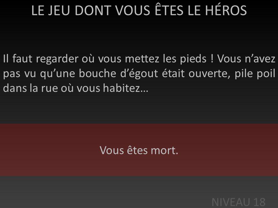 LE JEU DONT VOUS ÊTES LE HÉROS >: En allant sur le site, vous êtes assailli de virus. NIVEAU 18 Vous êtes mort.