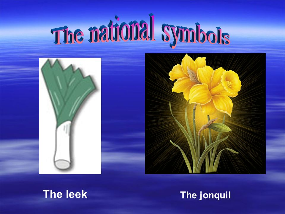 The leek The jonquil