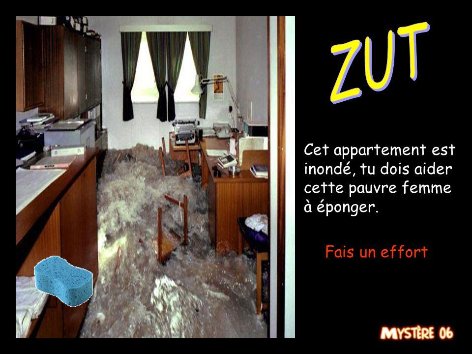 Cet appartement est inondé, tu dois aider cette pauvre femme à éponger. Plus vite