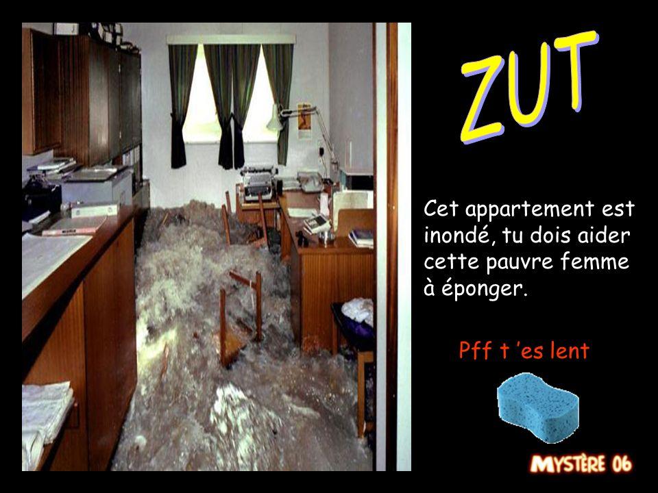Cet appartement est inondé, tu dois aider cette pauvre femme à éponger. Arf