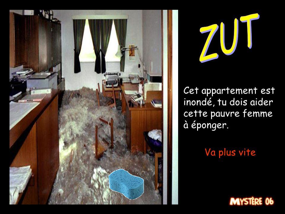 Cet appartement est inondé, tu dois aider cette pauvre femme à éponger. Allez bouge toi