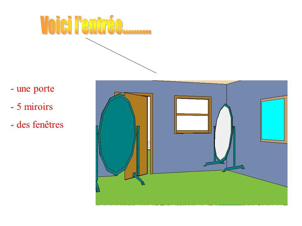 - une porte - 5 miroirs - des fenêtres