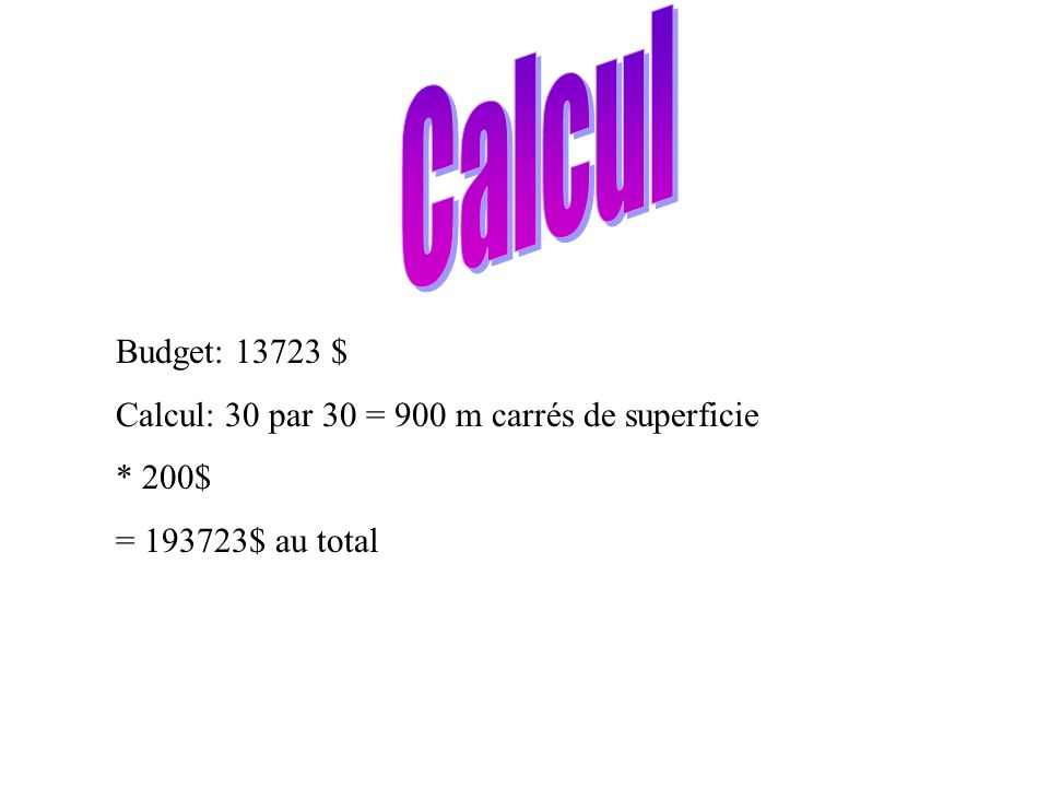 Budget: 13723 $ Calcul: 30 par 30 = 900 m carrés de superficie * 200$ = 193723$ au total