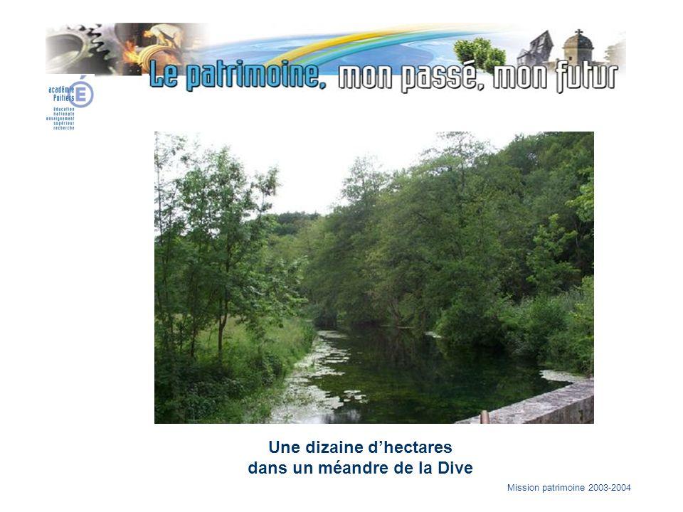 Mission patrimoine 2003-2004 Une dizaine dhectares dans un méandre de la Dive
