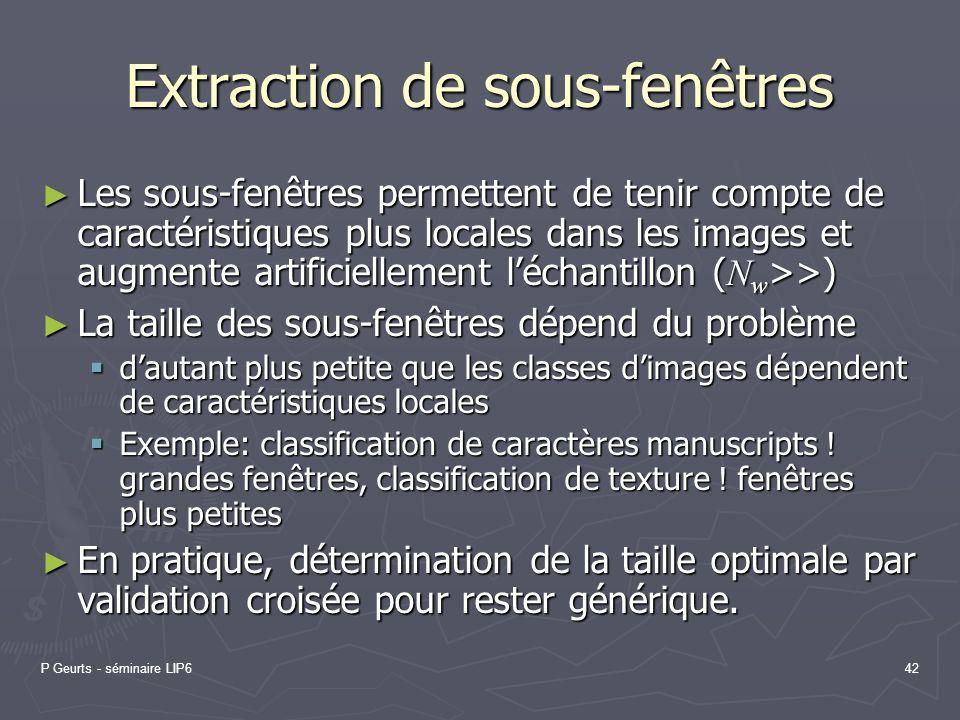 P Geurts - séminaire LIP642 Extraction de sous-fenêtres Les sous-fenêtres permettent de tenir compte de caractéristiques plus locales dans les images