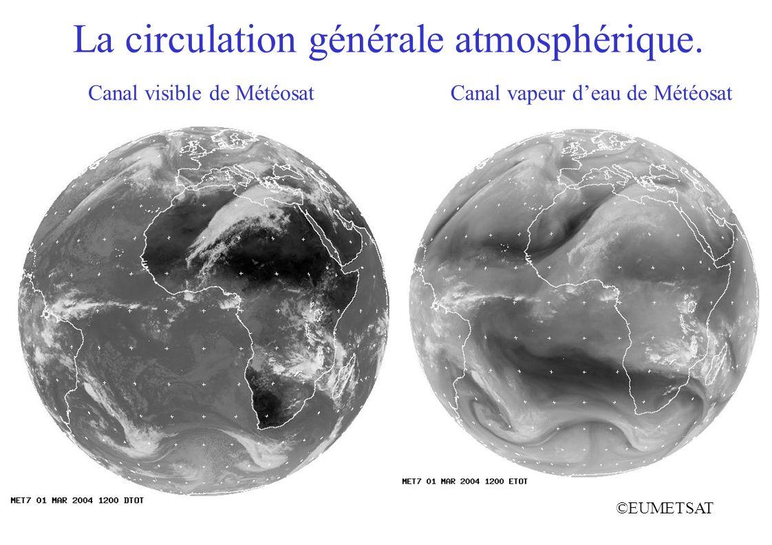 La circulation générale atmosphérique. ©EUMETSAT Canal vapeur deau de MétéosatCanal visible de Météosat