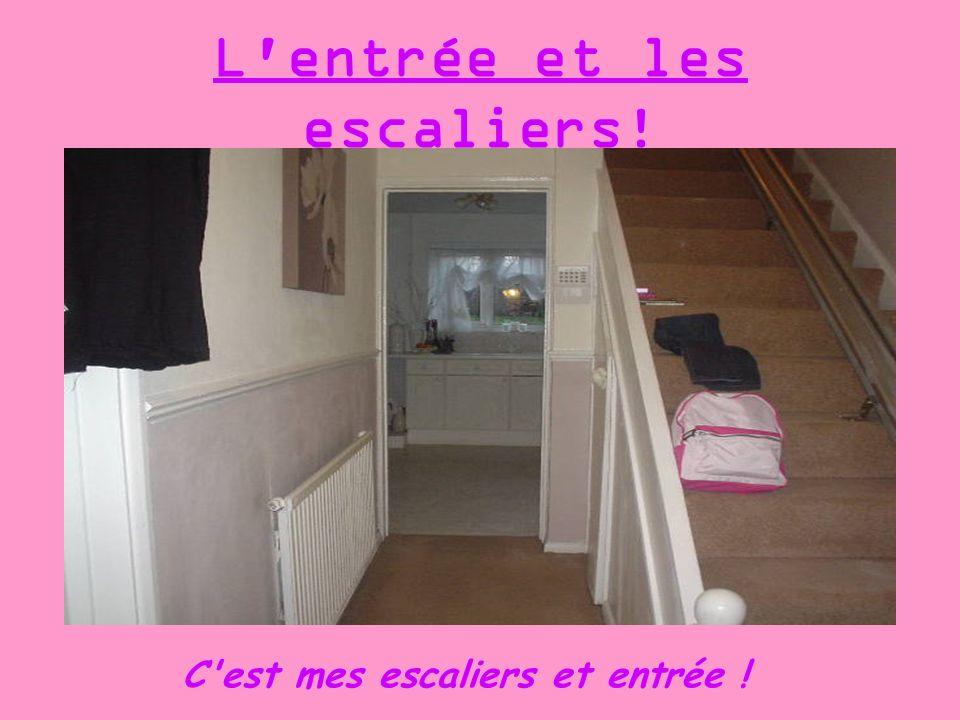 L'entrée et les escaliers! C'est mes escaliers et entrée !