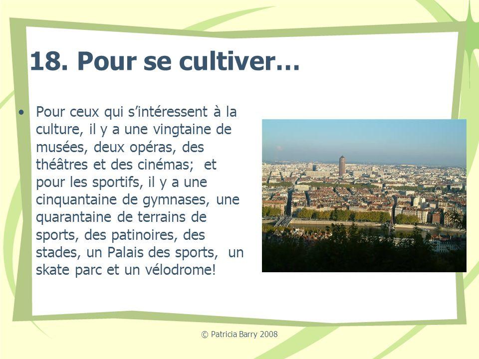 © Patricia Barry 2008 18. Pour se cultiver… Pour ceux qui sintéressent à la culture, il y a une vingtaine de musées, deux opéras, des théâtres et des