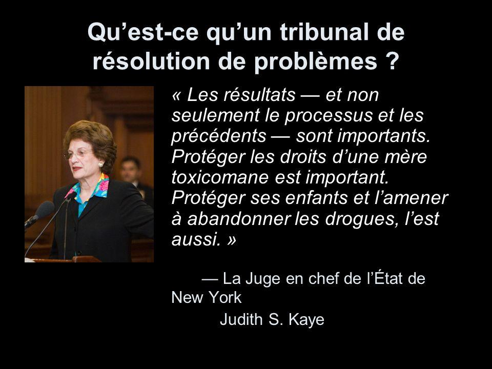 Quest-ce quun tribunal de résolution de problèmes ? « Les résultats et non seulement le processus et les précédents sont importants. Protéger les droi