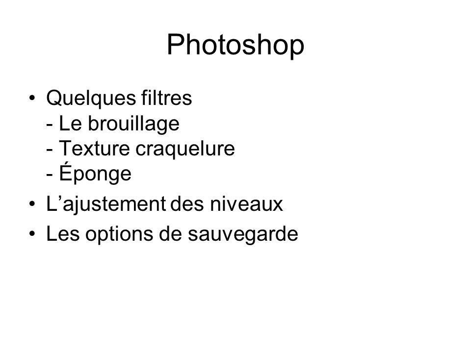 Photoshop Quelques filtres - Le brouillage - Texture craquelure - Éponge Lajustement des niveaux Les options de sauvegarde