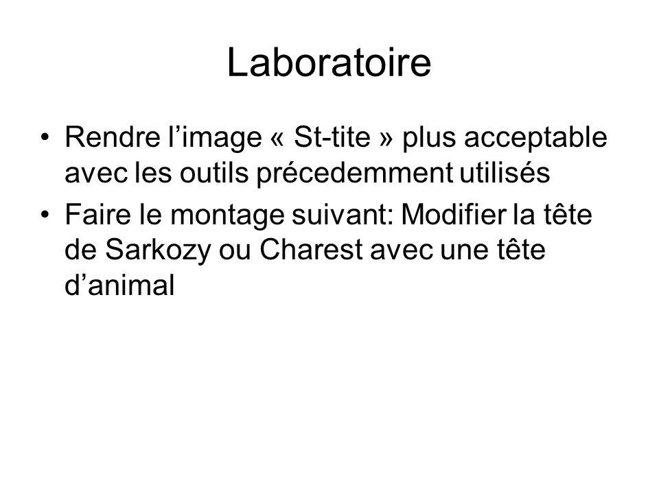 Laboratoire Rendre limage « St-tite » plus acceptable avec les outils précedemment utilisés Faire le montage suivant: Modifier la tête de Sarkozy ou Charest avec une tête danimal