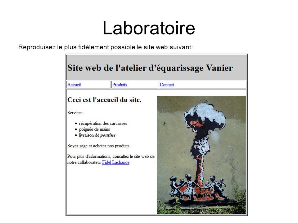 Laboratoire Reproduisez le plus fidèlement possible le site web suivant: