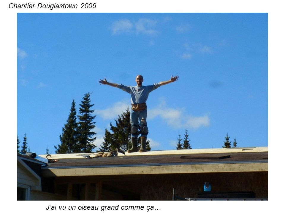 Jai vu un oiseau grand comme ça… Chantier Douglastown 2006