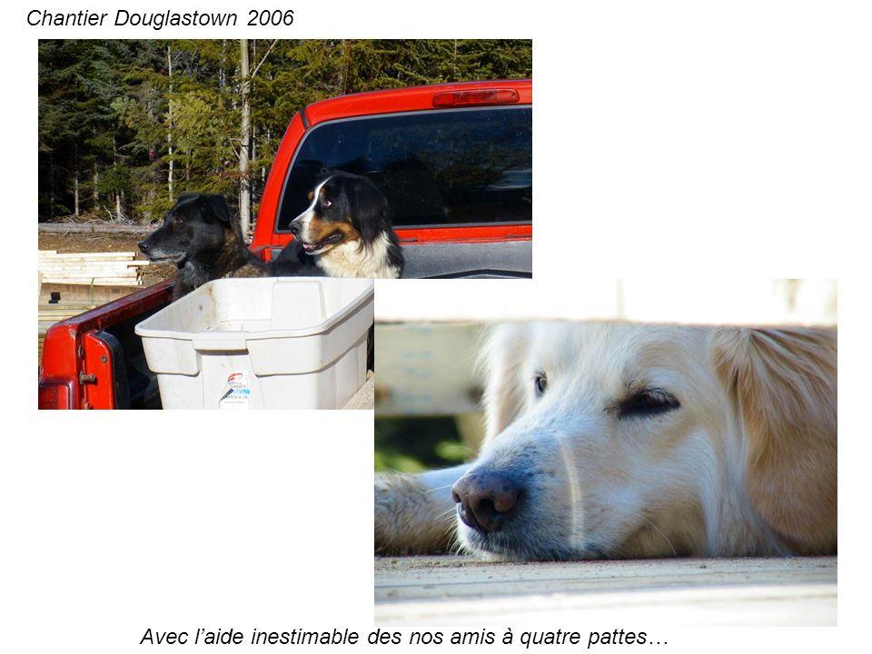 Avec laide inestimable des nos amis à quatre pattes… Chantier Douglastown 2006