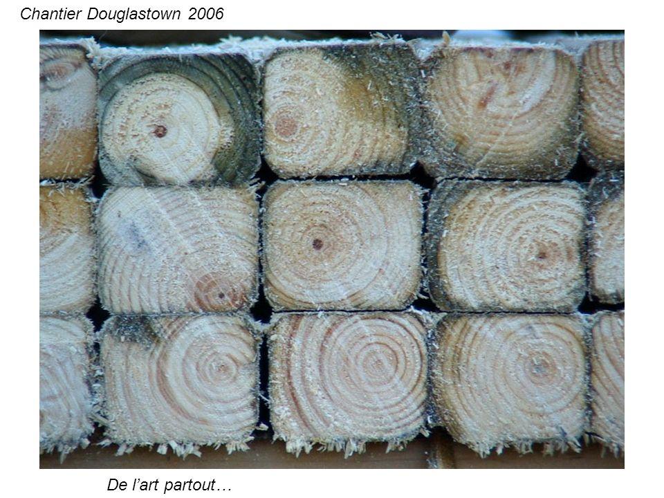 De lart partout… Chantier Douglastown 2006