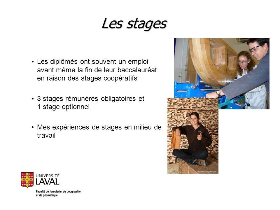 Les stages Les diplômés ont souvent un emploi avant même la fin de leur baccalauréat en raison des stages coopératifs 3 stages rémunérés obligatoires
