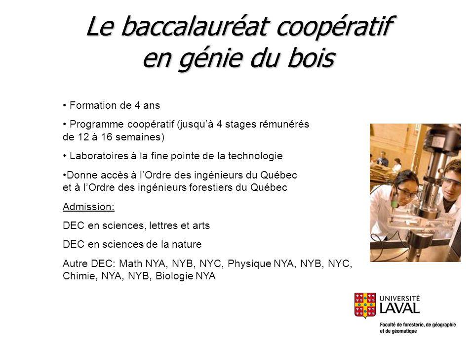 Le baccalauréat coopératif en génie du bois Formation de 4 ans Programme coopératif (jusquà 4 stages rémunérés de 12 à 16 semaines) Laboratoires à la