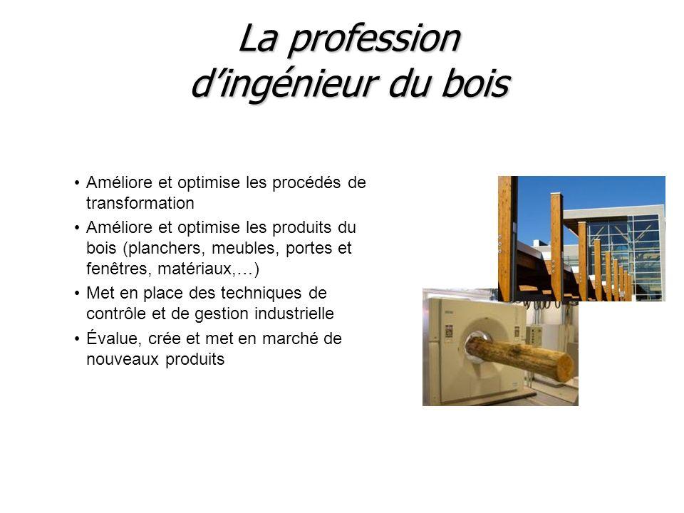 La profession dingénieur du bois Améliore et optimise les procédés de transformation Améliore et optimise les produits du bois (planchers, meubles, po