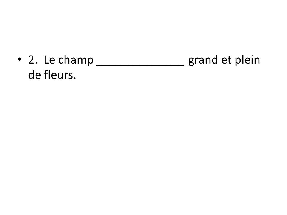 2. Le champ ______________ grand et plein de fleurs.