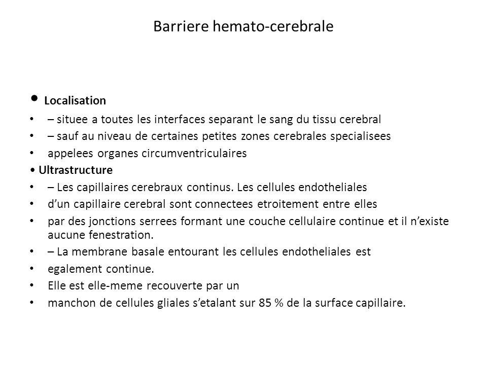 Barriere hemato-cerebrale Localisation – situee a toutes les interfaces separant le sang du tissu cerebral – sauf au niveau de certaines petites zones