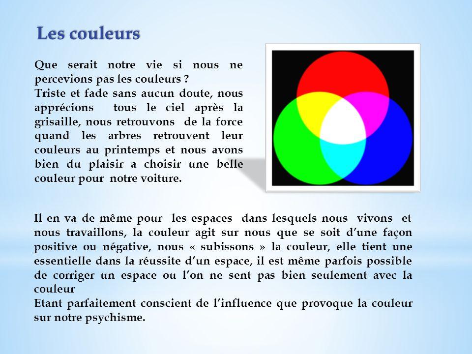 Les couleurs Que serait notre vie si nous ne percevions pas les couleurs ? Triste et fade sans aucun doute, nous apprécions tous le ciel après la gris