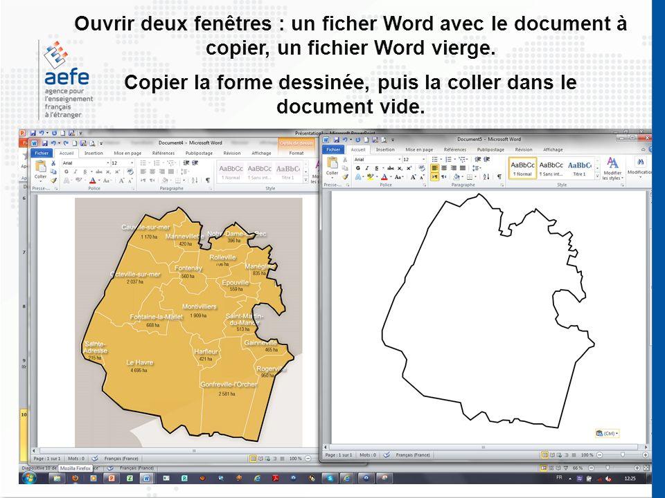 Ouvrir deux fenêtres : un ficher Word avec le document à copier, un fichier Word vierge. Copier la forme dessinée, puis la coller dans le document vid