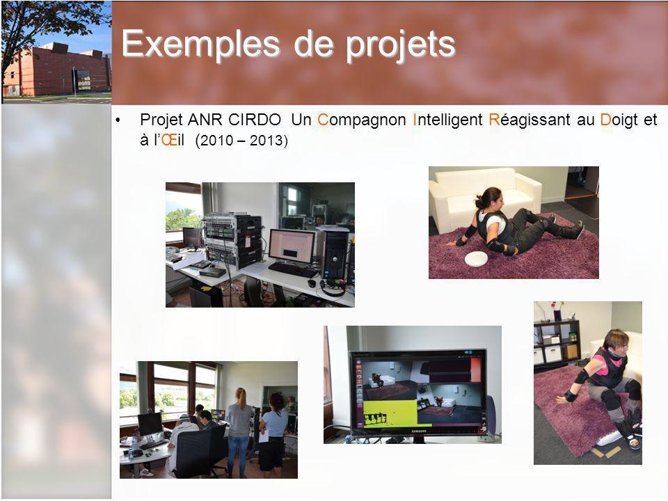 Exemples de projets Projet ANR CIRDO Un Compagnon Intelligent Réagissant au Doigt et à lŒil ( 2010 – 2013)