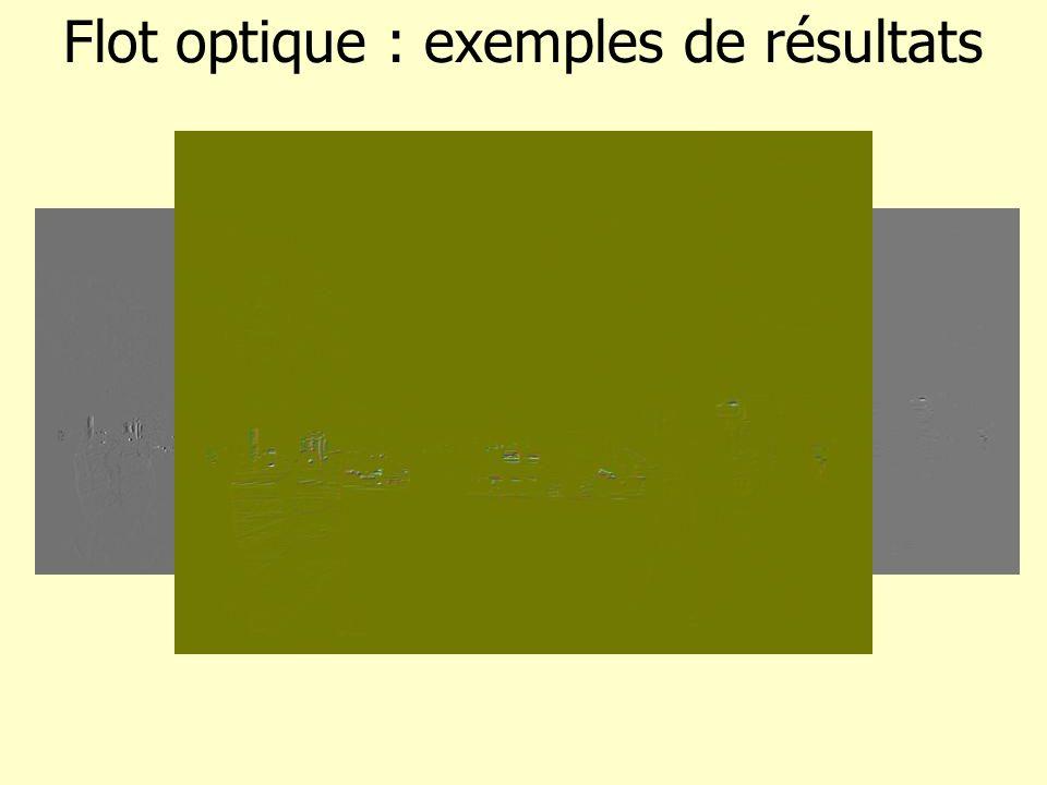 Flot optique : informations dérivées Cas dune caméra statique : flot permet destimer les mouvements des objets de la scène segmentation de la scène par le mouvement suivi (tracking) des objets Cas dune caméra embarquée : flot permet destimer le mouvement dominant de la scène foyer dexpantion egomotion de la caméra les objets de la scène non statiques trajectoires des objets non statiques
