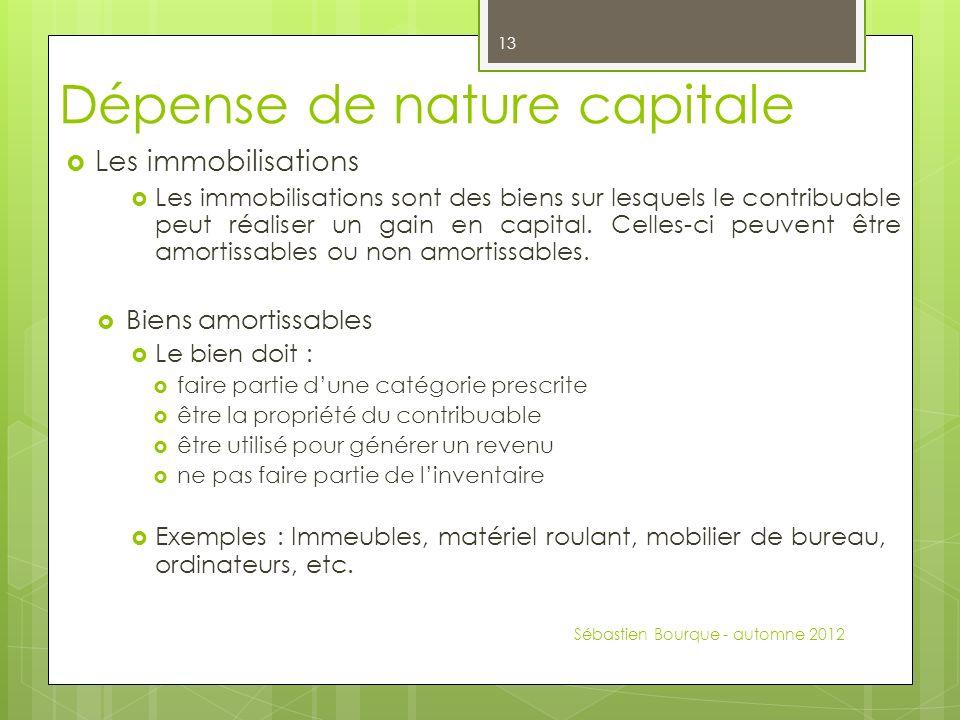 Dépense de nature capitale Les immobilisations Les immobilisations sont des biens sur lesquels le contribuable peut réaliser un gain en capital.