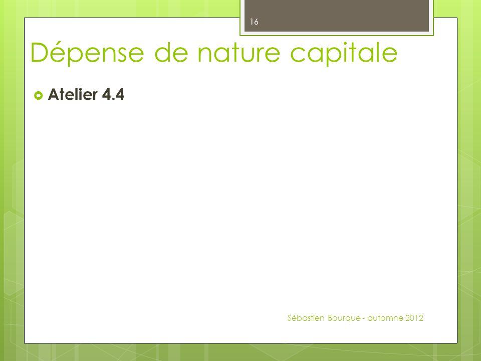 Atelier 4.4 Sébastien Bourque - automne 2012 16 Dépense de nature capitale