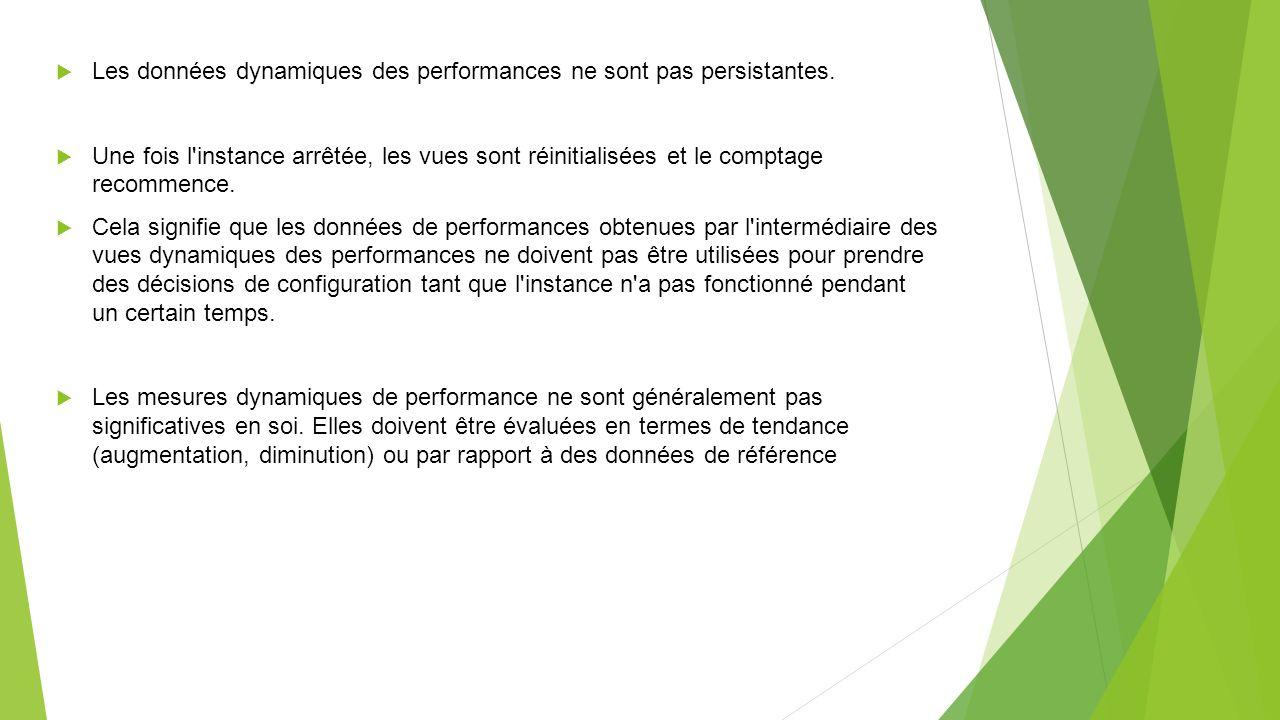 Les données dynamiques des performances ne sont pas persistantes.