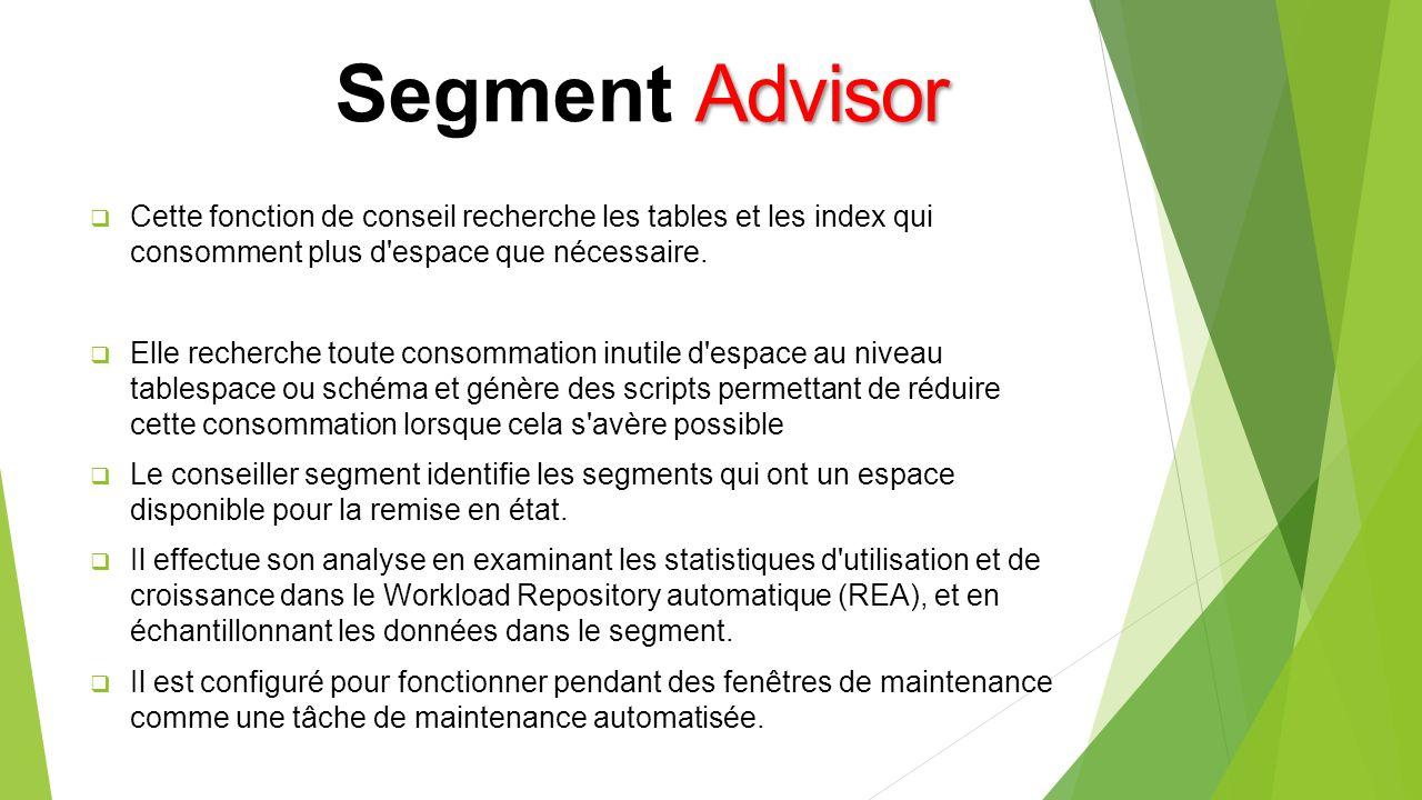 Advisor Segment Advisor Cette fonction de conseil recherche les tables et les index qui consomment plus d espace que nécessaire.