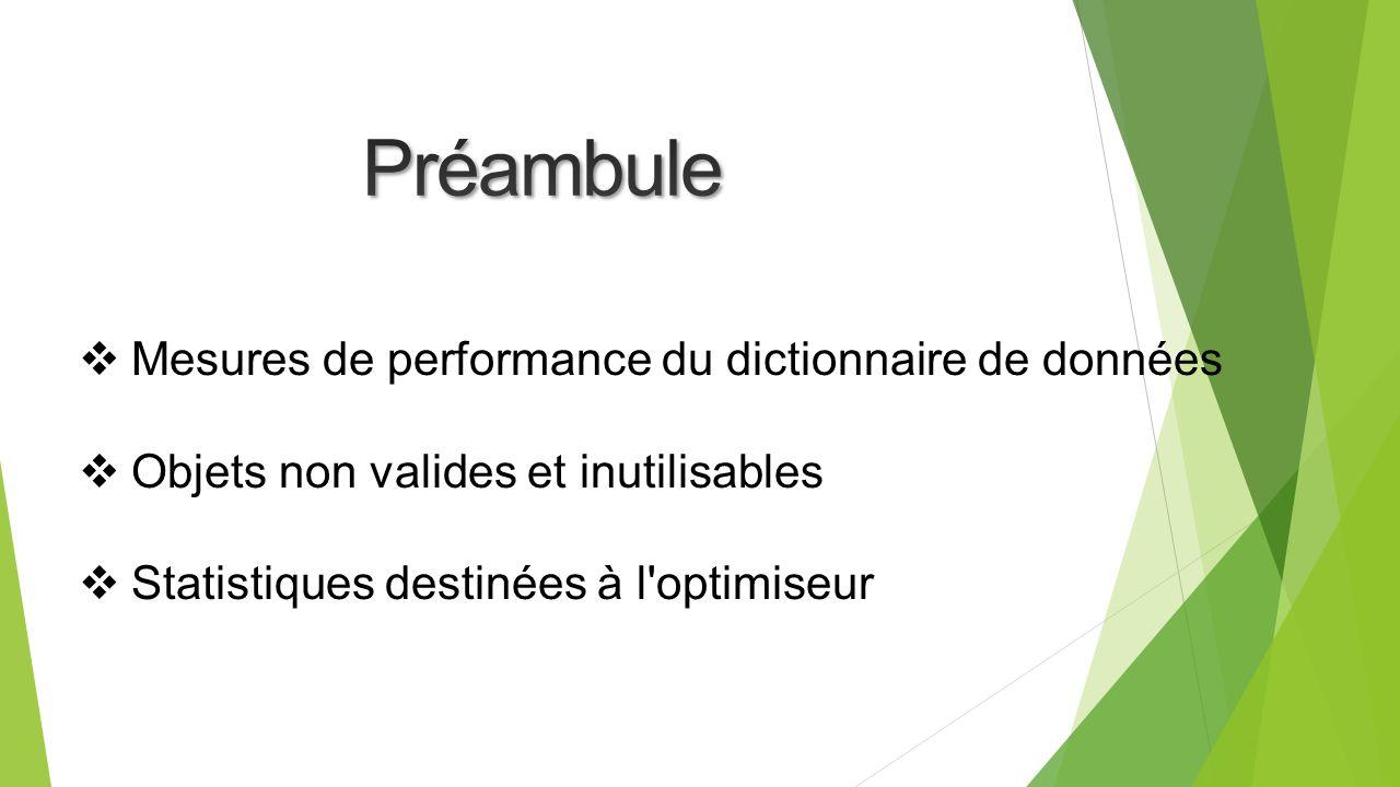 Mesures de performance du dictionnaire de données Objets non valides et inutilisables Statistiques destinées à l optimiseur