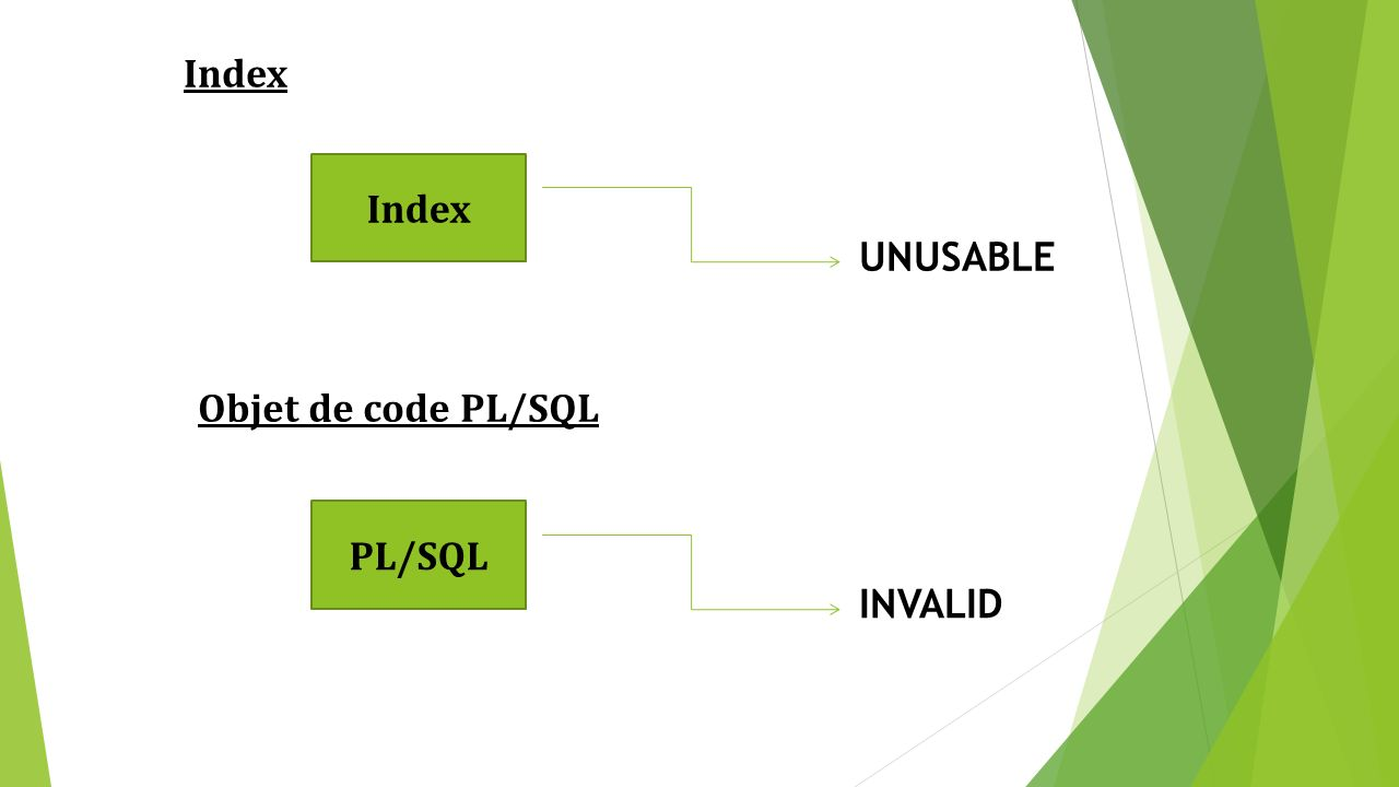 Index UNUSABLE Objet de code PL/SQL PL/SQL INVALID