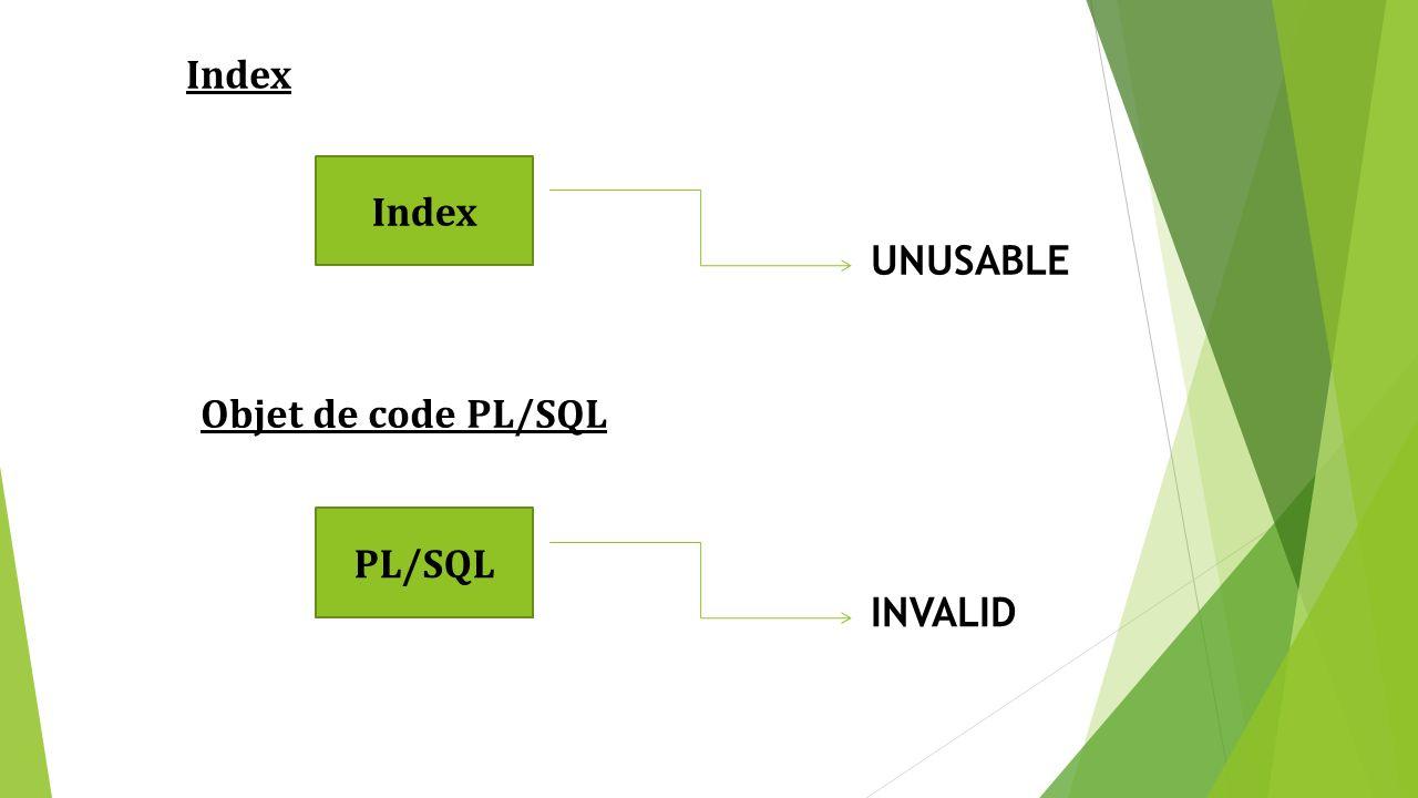 La page Performance est divisée en trois régions principales : Host : mesures de performance du serveur, indiquant le nombre de processus en attente et la quantité de pagination mémoire.
