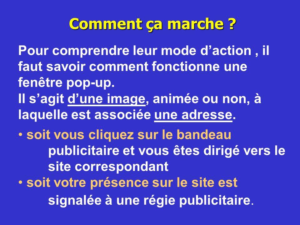 Ainsi certains hébergeurs dont «FranceMicro.net » proposent aux concepteurs de pages perso un hébergement sans publicité.