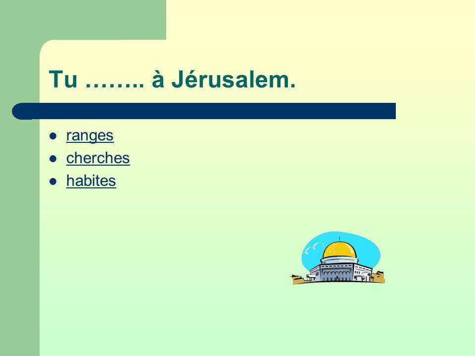Tu …….. à Jérusalem. ranges cherches habites
