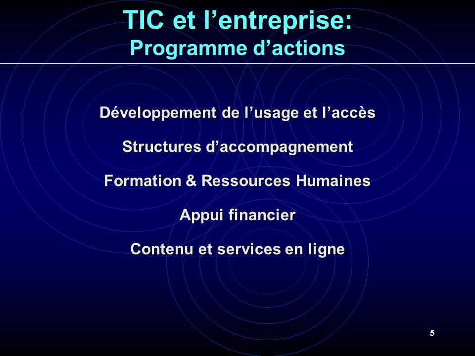 5 TIC et lentreprise: Programme dactions Développement de lusage et laccès Structures daccompagnement Formation & Ressources Humaines Appui financier